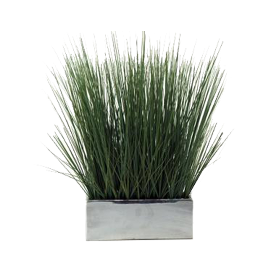 Decorative rectangular planters images for Ornamental grasses for planters