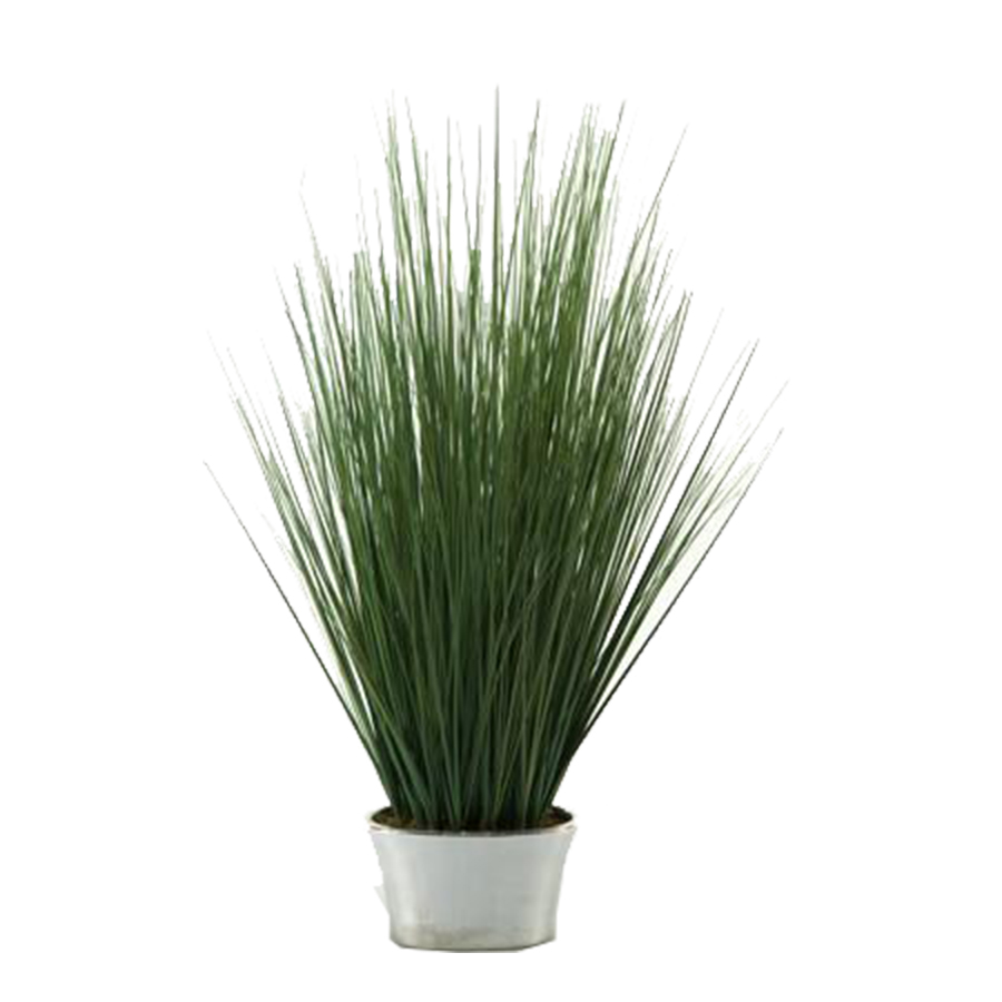 Rent flowers for home staging flower rentals for home for Ornamental grasses for planters